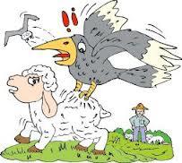 伊索寓言: 鹰、乌鸦和牧人