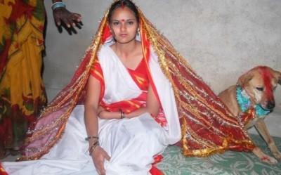 西语新闻:印度18岁女子竟然与流浪狗结婚