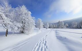 西班牙語中關于雪的句子
