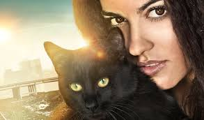 西语美文:Juanito y su gata 小胡安和他的猫