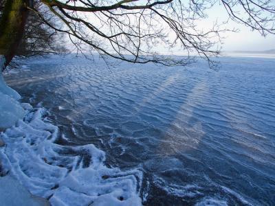 西班牙语阅读: 海浪会被冻住吗?